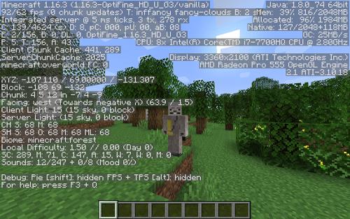 Minecraft fps